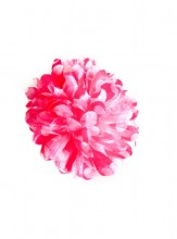 Hair Flower pink with white dots