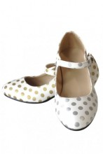 Flamenco Shoes silver and gold