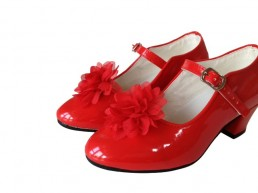 Shoe Clip with red flower