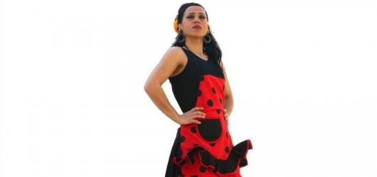 flamenco schurze 2